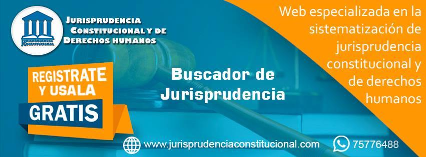 Jurisprudencia Constitucional y de Derechos Humanos